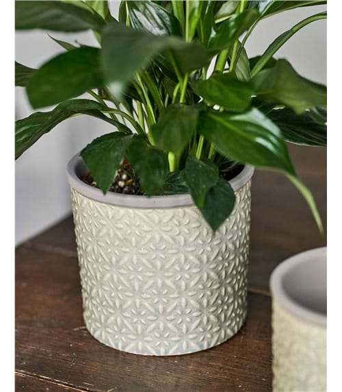 Burgon & Ball Tuscany Glazed Plant Pot Large