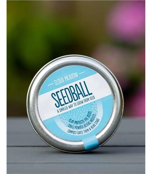 Cloud Seedball