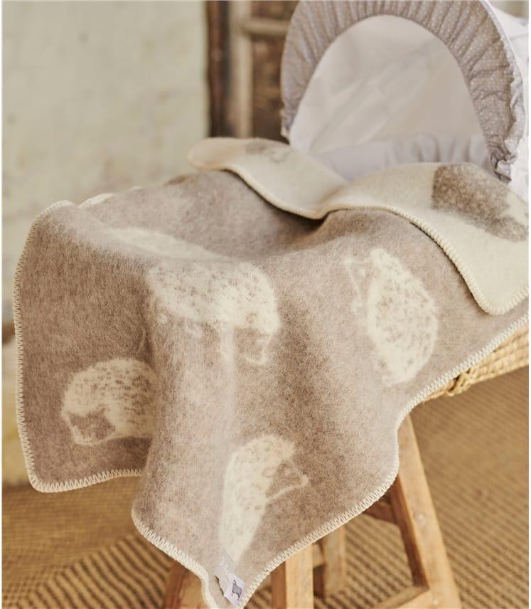 Hedgehog Little Blanket
